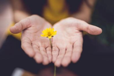 Kỹ năng mềm trong cuộc sống: Những cách để nói lời xin lỗi hoàn hảo