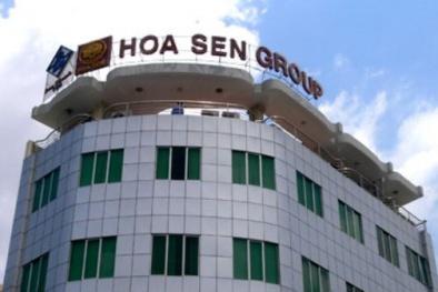 Cổ phiếu Hoa Sen liên tục 'rớt thảm', đại gia Lê Phước Vũ quyết định làm điều bất ngờ