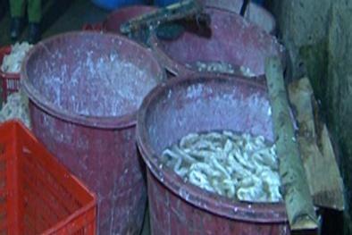 Thanh Hóa: Phát hiện cơ sở chế biến hơn 300kg nội tạng bẩn mỗi ngày