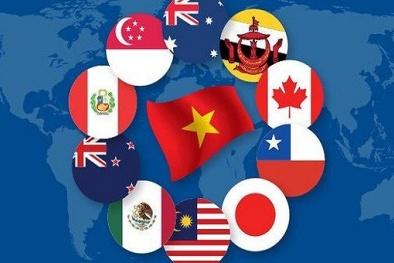 Hiệp định CPTPP và những 'điểm sáng' cho nền kinh tế Việt Nam