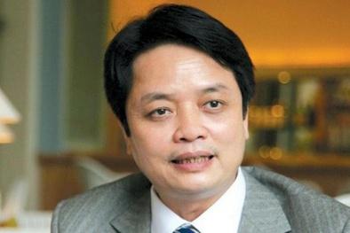 Xây sân vận động 100.000 chỗ bằng vốn tư nhân tại Hà Nội: 'Tại sao không?'