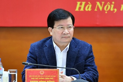 Phó Thủ tướng: Có tuyến cao tốc chạy suốt Bắc - Nam là mong muốn của toàn Đảng, toàn dân