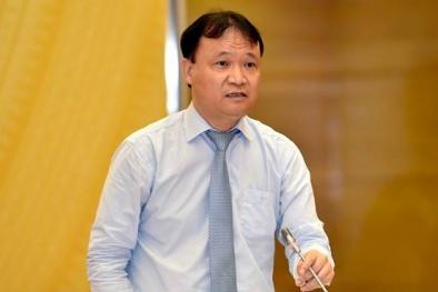 Hiệp định CPTPP tạo xung lực mới thúc đẩy hợp tác thương mại Việt Nam - châu Mỹ