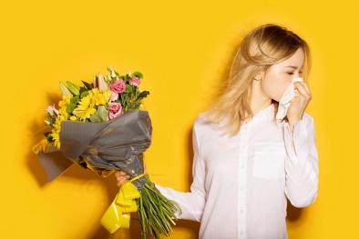 Dị ứng phấn hoa – bệnh của mùa xuân và mùa hè