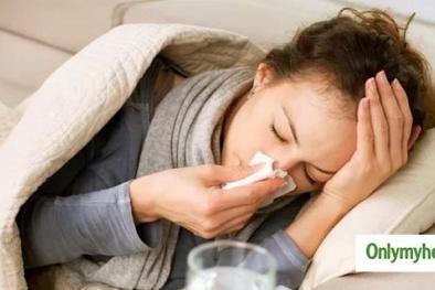 Hơn 6.700 người nhiễm cúm lợn tại Ấn Độ chỉ trong vài tháng đầu năm