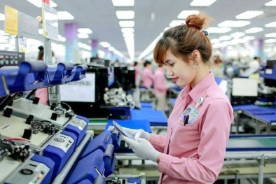 Xuất nhập khẩu hàng hóa Việt Nam cán mốc 100 tỷ USD