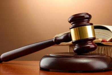 Công ty CP Kỹ thuật điện Sông Đà dính án phạt do vi phạm quy định công bố thông tin