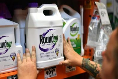 Bồi thường 80 triệu USD do trong thuốc diệt cỏ có chất gây ung thư