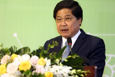 Gỡ rào cản để nông sản Việt Nam nâng cao giá trị
