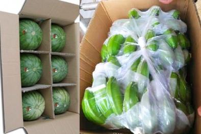 Xuất khẩu rau quả sang Trung Quốc phải truy suất nguồn gốc và tiêu chuẩn ngày càng khắt khe