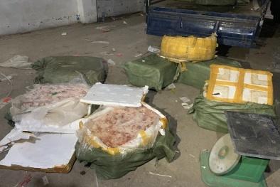 Nầm lợn đã bốc mùi hôi thối nhập lậu từ Trung Quốc về Việt Nam được tạm giữ