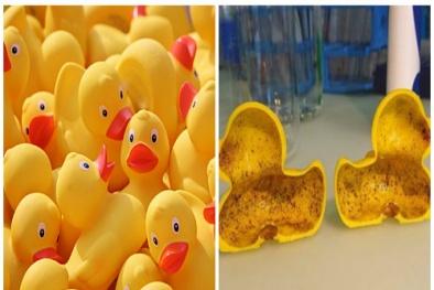 Phát hiện hóa chất gây vô sinh 'tiềm ẩn' trong vịt cao su đồ chơi trẻ em Trung Quốc