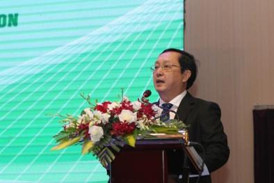 Việt Nam có lợi thế lớn với nguồn năng lượng tái tạo dồi dào