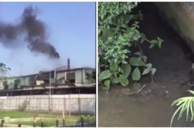 Dân tiếp tục 'tố' nhà máy xả thải gây ô nhiễm, đại diện Sunhouse nói 'chuyện xưa rồi'