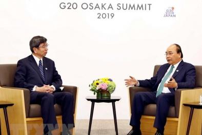 Chủ tịch ADB hội kiến Thủ tướng Nguyễn Xuân Phúc và thảo luận về các hoạt động