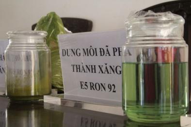 Đắk Nông: Bắt 28 đối tượng trong đường dây kinh doanh xăng không đạt chuẩn của đại gia Trịnh Sướng