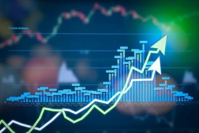 Hàng loạt cá nhân bị xử phạt trên thị trường chứng khoán