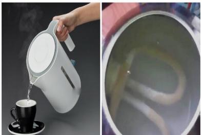 Để nước thừa trong bình đun siêu tốc tác hại ít ai ngờ