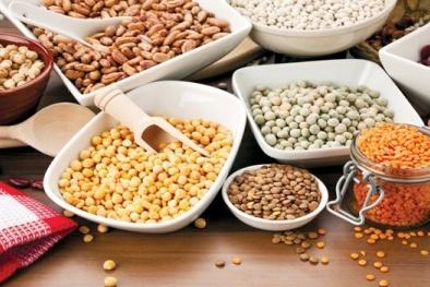 Kỹ thuật phân tích hàm lượng độc tố và Vitamin trong thực phẩm