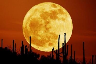 Siêu trăng xuất hiện nguy cơ gây ảnh hưởng tới Trái đất