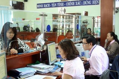 Hơn 7 nghìn cơ quan công bố áp dụng Hệ thống quản lý chất lượng TCVN ISO 9001