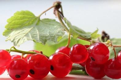 Thị trường trái cây nhập khẩu lại 'phát sốt' với nho chuỗi ngọc giá 2 triệu một kg