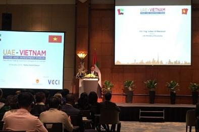 Tăng cường kết nối cộng đồng doanh nghiệp Việt Nam – UAE