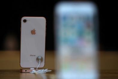 'Soi' công nghệ và ứng dụng trên iPhone SE 2 ra mắt đầu năm 2020