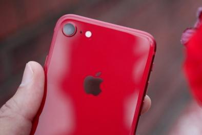iPhone 9 Plus sẽ ra mắt vào cuối năm nay với giá chưa tới 12 triệu đồng?