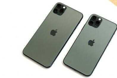 Cận tết iPhone 11 Pro Max giảm giá chỉ còn 17,9 triệu đồng