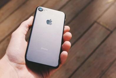 'Soi' công nghệ và ứng dụng của iPhone 9 giá rẻ chuẩn bị ra mắt