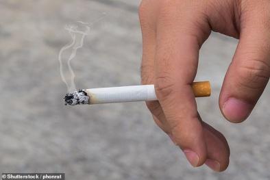 Khói thuốc lá bám rất lâu trên vật liệu cũng gây bệnh như hút thuốc trực tiếp