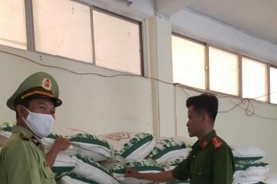 Phú Yên: Tạm giữ 21.000 kg đường tinh luyện do nước ngoài sản xuất