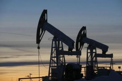 Giá xăng dầu hôm nay 2/4: Quay đầu tăng trở lại