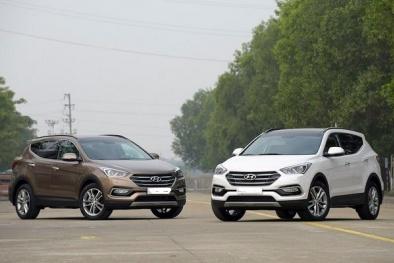Mua ô tô máy xăng hay máy dầu cần tránh những điều này để có xe ưng ý