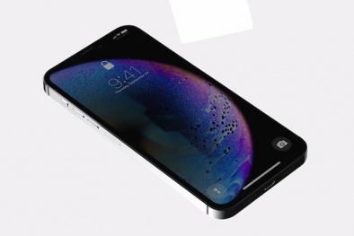 iPhone 12 sẽ có phiên bản 'mini' giá rẻ hơn iPhone 11