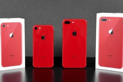 Apple sắp ra mắt iPhone giá rẻ chỉ bằng một nửa iPhone SE 2020