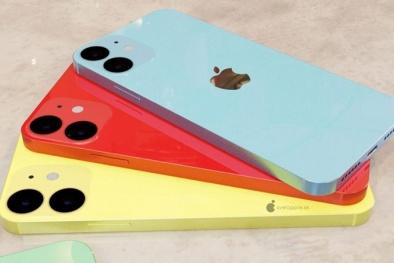 iPhone 12 có thêm màu mới, màn hình OLED tiêu chuẩn