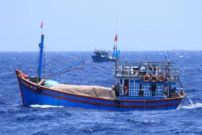 Hiệp định Hợp tác nghề cá trong Vịnh Bắc Bộ đã hết hiệu lực