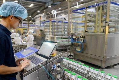 Năng suất lao động Việt Nam tăng đều, cao hơn các nước ASEAN-6