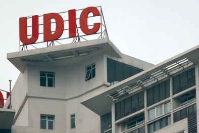 Nhiều công ty thành viên UDIC thuộc diện giám sát đặc biệt