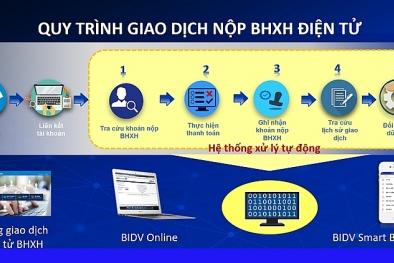 Đóng, nộp BHXH, BHYT 24/7 trên Cổng giao dịch điện tử BHXH Việt Nam