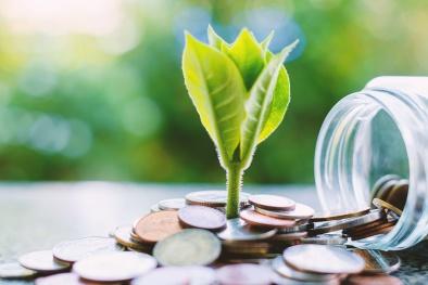 Vàng, đất, chứng khoán: Đầu tư vào đâu sinh lời tốt nhất hiện nay?