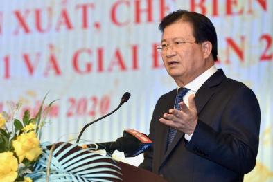 Phó Thủ tướng Trịnh Đình Dũng: Xử nghiêm vi phạm sử dụng gỗ nguyên liệu bất hợp pháp
