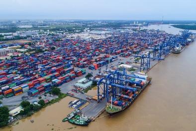 Dịp Tết, cảng Tân cảng - Cát Lái xuất nhập khẩu hơn 1 triệu tấn hàng hóa