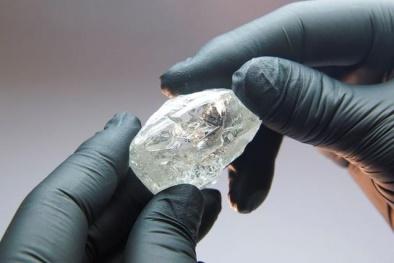 Đấu giá viên kim cương quý hiếm nặng 242 carat, khởi điểm 2 triệu USD