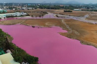 Xử phạt 372 triệu đồng đối với công ty xả thải làm hồ nước đổi sang màu hồng tím