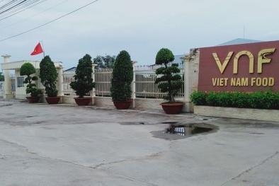 Công ty Cổ phần Việt Nam Food (VNF) đạt Giải Vàng Chất lượng Quốc gia năm 2020