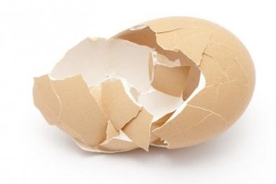 Biến vỏ trứng thành vật liệu để sản xuất xương nhân tạo