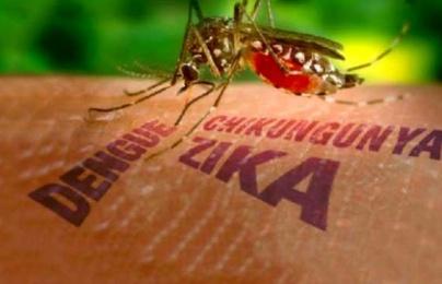 Người dân mơ hồ về xét nghiệm miễn phí virus Zika
